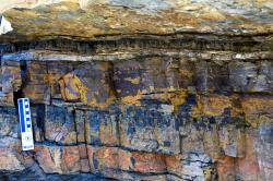 Sign of demise and new beginnings: A distinct layer of white clay in southern Colorado rock exposure (and found elsewhere around the world) marks the end of the dinosaurs (non-avian, anyway) and the beginnings of the reign of mammals.