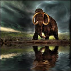 Mammoth: artistic re-creation
