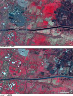 Satelite Imagery of Sidoarjo before and after Sidoarjo mud flow.