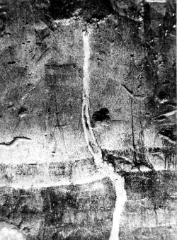New Madrid earthquakes: Earthquake fissure filled with intruded sand in Mississippi County, Missouri, formed at the time of the New Madrid earthquake. 1904 photograph by M. L. Fuller.