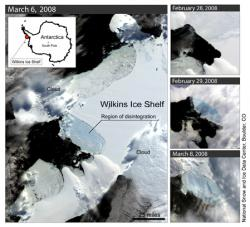 Ice capade: Aerial views of the ice sheet breaking at the Wilkins Ice Sheet in Antarctica show the massive amount of ice that's come free in the past month.
