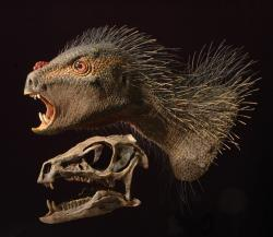Scary and toothy <i>Pegomastax africanus</i>