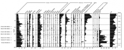 This is an example of a pollen record (Pederson et al., 2005)