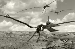 Pterodactylus ancestor discovered