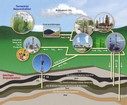 Carbon Sequestration: This nifty diagram illustrates both terrestrial and geologic carbon sequestration pathways.  Bonus!