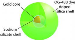 Nanolaser: Image shows the nanolaser design: a gold core surrounded by a glasslike shell filled with green dye
