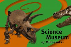 World's most powerful bite: the age-old confrontation between a gentle, grazing Triceratops horridus (cool name, by the way) and the massive jaws of a vicious, chomping-machine known as Tyrannosaurus rex is played out in a Science Museum of Minnesota postcard.