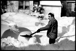 Snow? Yeah, I've got a few words for snow...: Does environment influence language?  Not as much as you might think.