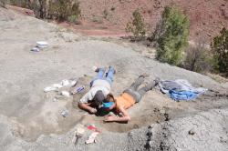 Digging out Tawa hallae at Ghost Ranch, NM: Sterling Nesbitt (left) and Michelle Stocker at work in the Hayden Quarry.