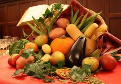 Thanksgiving Cornucopia: Is too much food ever enough?