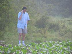 Yes, of course I'm in a tobacco field: You guys figured out what?! But how? Of course... with a virus! I'll meet you at the tobaccoratory!