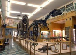 S. H. Knight Geological Museum in Laramie, WY: The museum will remain open and get an upgrade thanks to an endowment set up by a former University of Wyoming professor and his wife.