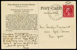 Reverse of Field Museum postcard: the addressee and address are significant.