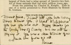 "Postcard inscription: ""Dearest Grace, I can't tell you how sorry I was to miss you. I tried to telephone but you were out. Many thanks for the lovely box of candy. We are all enjoying it. You were a dear to think of us. Much love from us all. Eleanor"""