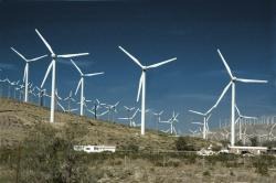 Wind energy harvest farm: Palm Springs, California