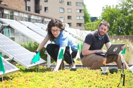 Green Roofs Solar Panels Better Together Science Buzz